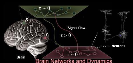 BrainNetworks
